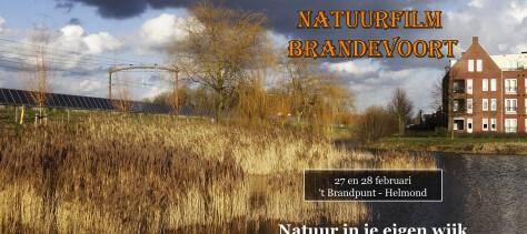 Vertoning van de prachtige Natuurfilm Brandevoort 27 en 28 feb 2016 in Wijkhuis 't BrandPunt